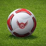 Logo Design for Football Coaching Company YJE Kicks
